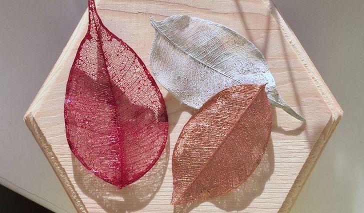 Сеточки от листьев
